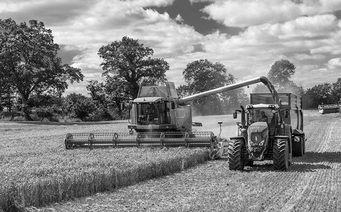 Getreideernte mit Landmaschinen